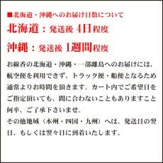 画像3: 奥野晴明堂のお線香 ZERO香料 ミニサイズ キュービックタイプ (無香料 ゼロ 0) (3)
